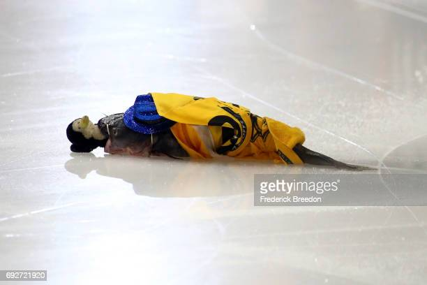 A catfish lays on the ice wrapped in a towel with a stuffed penguins prior to Game Four of the 2017 NHL Stanley Cup Final between the Pittsburgh...