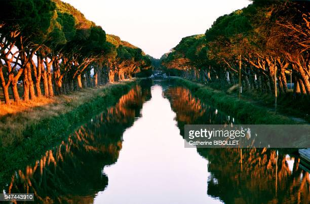 A canal linking the Canal du Midi to the Canal de la Robine, in the Minervois region . Pays cathare: Aude, canal de jonction reliant le canal du Midi...