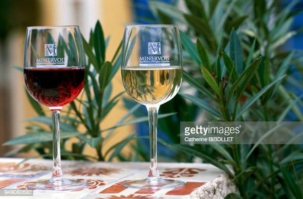 wineproducing domain in Ouveillan in the Minervois region The red and white Minervois wine at Chateau Cabezac Pays cathare domaine viticole à...