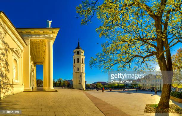 cathedral basilica of st stanislaus and st ladislaus of vilnius, lithuania - vilnius stock pictures, royalty-free photos & images