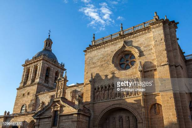 cathedral of ciudad rodrigo - comunidad autónoma de castilla y león fotografías e imágenes de stock