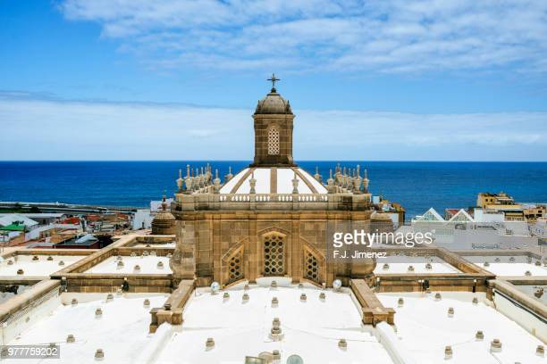 cathedral of las palmas de gran canaria - grand canary stock pictures, royalty-free photos & images