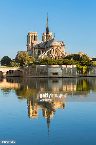 cathedral of notre dame paris france at morning - notre dame de paris photos et images de collection