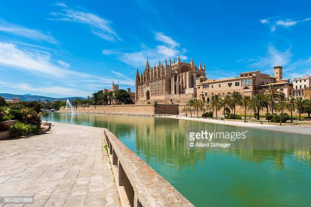 cathedral of palma de mallorca, spain - palma majorca stock photos and pictures