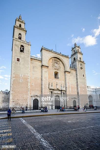 xxxl: cathedral of san ildefonso, merida, mexico - merida mexico stock photos and pictures