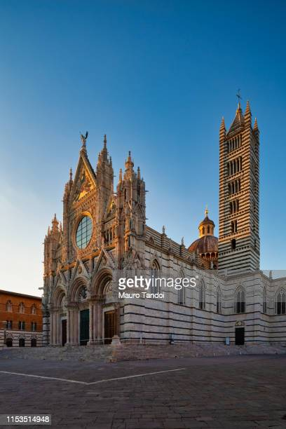 cathedral of santa maria assunta at dusk, siena, tuscany - mauro tandoi stock photos and pictures