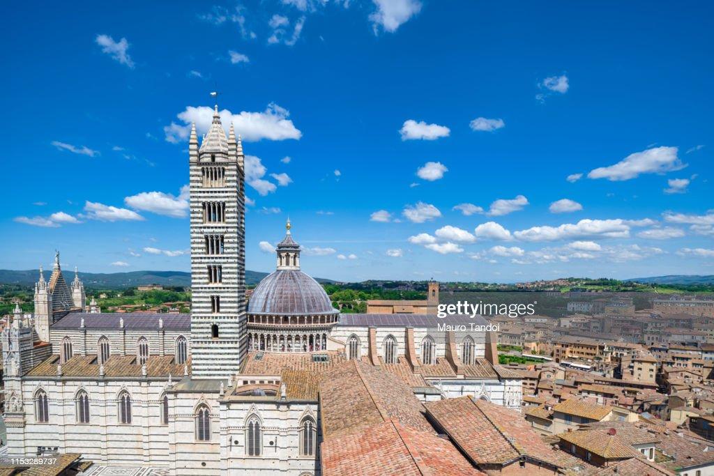 Cathedral of Santa Maria Assunta, Siena, Tuscany : Stock Photo