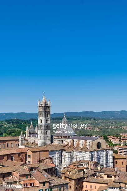 cathedral of santa maria assunta, siena, tuscany - mauro tandoi stock photos and pictures