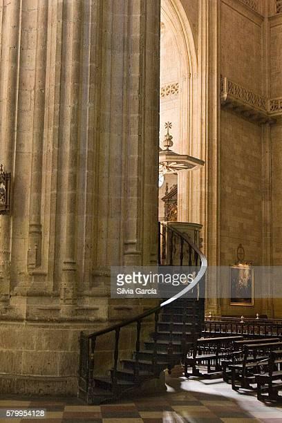 cathedral of segovia, castile and leon. - turista stock-fotos und bilder