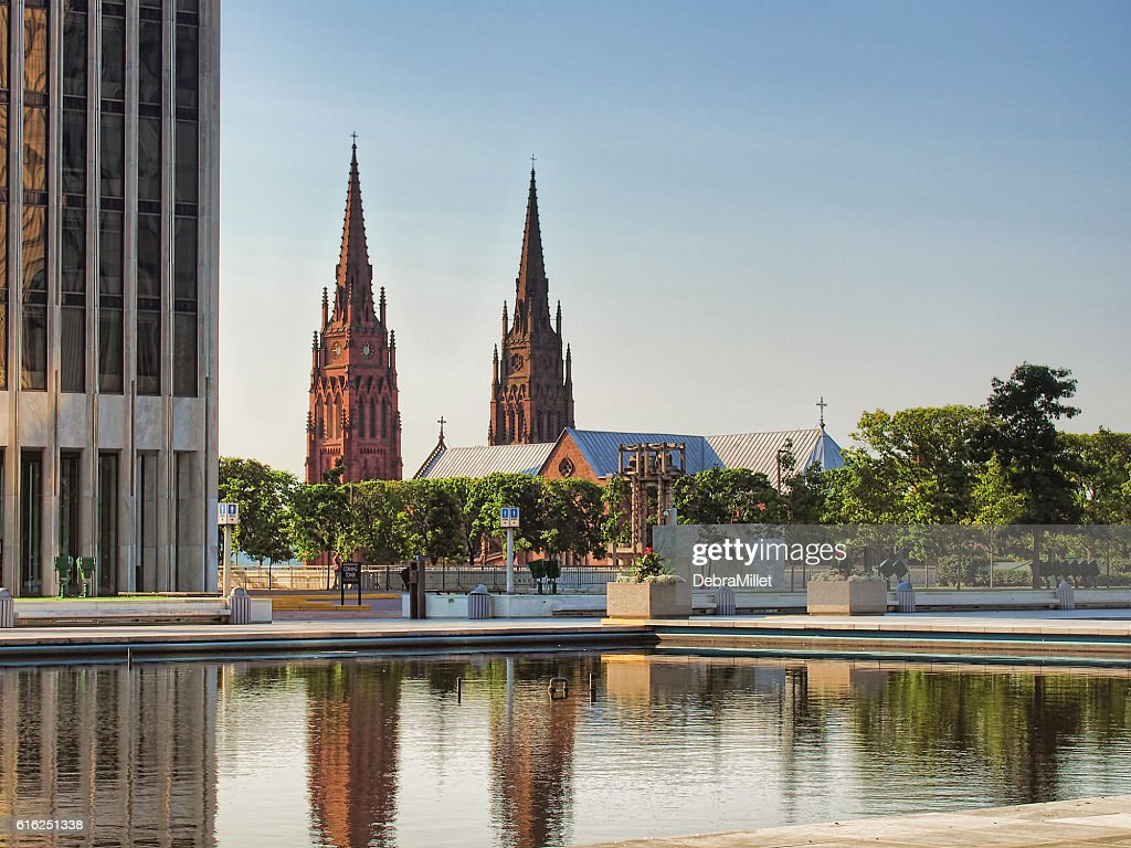 Cathedral of the Immaculate Conception : Stock Photo