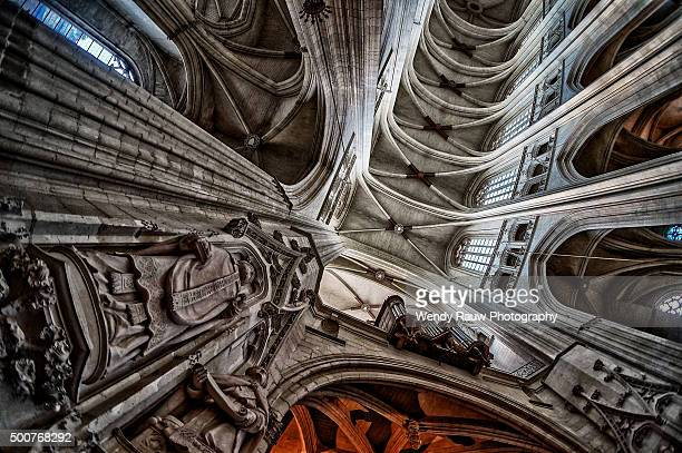 cathedral saint peter and saint paul, nantes, france - kathedrale von nantes stock-fotos und bilder