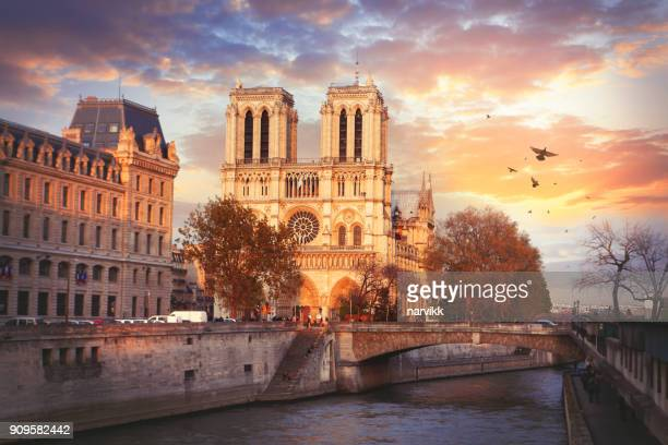 cathedrale notre-dame de paris - notre dame de paris stock photos and pictures
