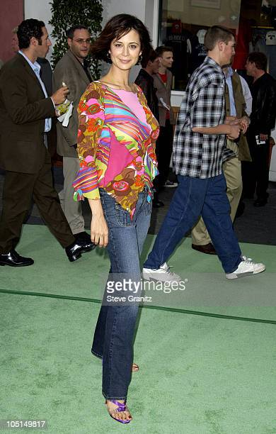 Catherine Bell during World Premiere Of 'The Hulk' Hollywood at Universal Amphitheatre in Universal City California United States