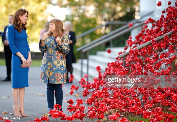 Catherine Duchess of Cambridge accompanied by Diane Lees views the 'Weeping Window' ceramic poppies art installation as she visits the Imperial War...