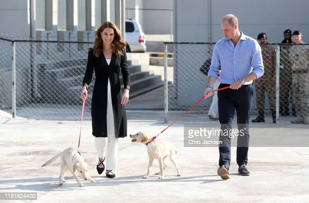 Catherine Duchess of Cambridge and Prince William Duke of Cambridge with golden labrador puppies Salto and Sky as they visit an Army Canine Centre...
