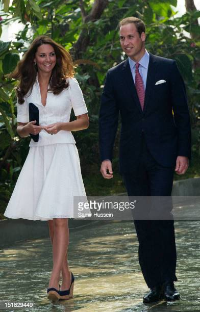 Catherine Duchess of Cambridge and Prince William Duke of Cambridge visit the 'rain mountain' dome walk at Gardens by the Bay on day 2 of their...