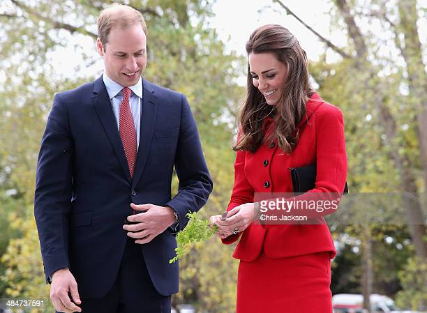 Catherine Duchess of Cambridge and Prince William, Duke of Cambridge prepare to cut the 'flower ribbon' when they officially open the Visitor's...
