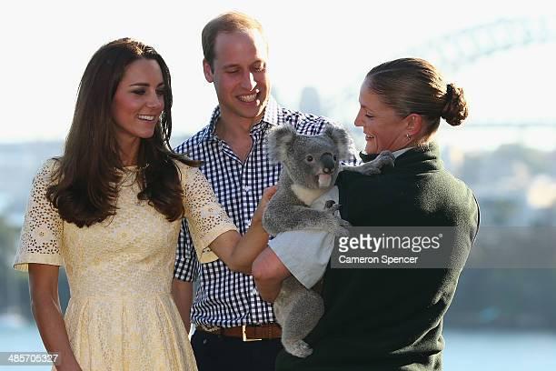 Catherine Duchess of Cambridge and Prince William Duke of Cambridge meet a Koala at Taronga Zoo on April 20 2014 in Sydney Australia The Duke and...