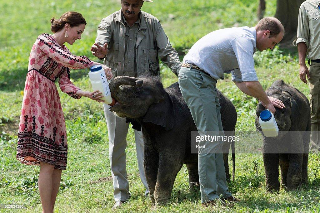 The Duke & Duchess Of Cambridge Visit India & Bhutan - Day 4 : Nachrichtenfoto