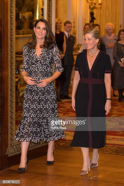 Catherine Duchess of Cambridge and Sophie The Countess of Wessex attend The Commonwealth Fashion Exchange Reception at Buckingham Palace on February...