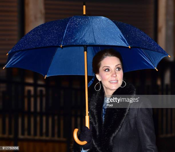 Catherine Duchess of Cambridge arrives for a reception to celebrate Swedish culture at the Fotografiska Gallery on day two of their royal visit to...