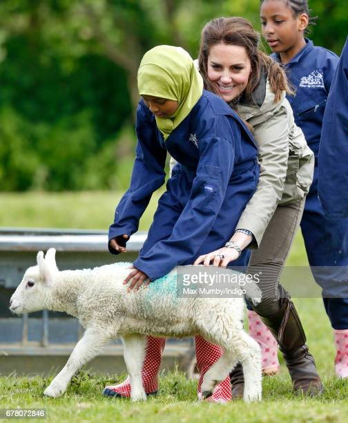 Catherine Duchess of Cambridge attempts to grab 'Stinky' the lamb as she visits Farms for City Children on May 3 2017 in Arlingham England Farms for...