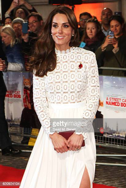 Catherine Duchess of Cambridge attends the UK Premiere of 'A Street Cat Named Bob' in aid of Action On Addiction at The Curzon Mayfair on November 3...