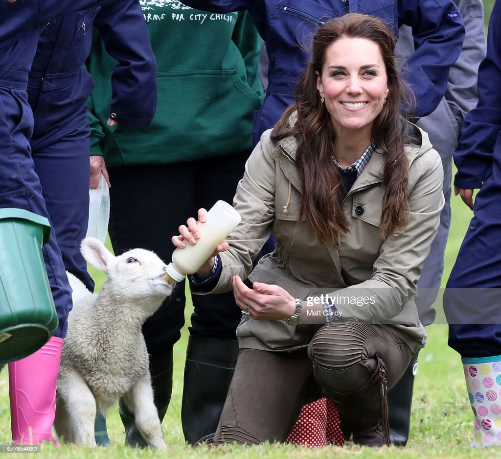 Catherine, Duchess of Cambridge feeds a lamb as she visits Author Michael Morpurgo's Farms for City Children on May 3, 2017 in Arlingham, Gloucestershire. Farms for City Children is a charity which offers children in the UK a chance to live and work on a real farm for a week.