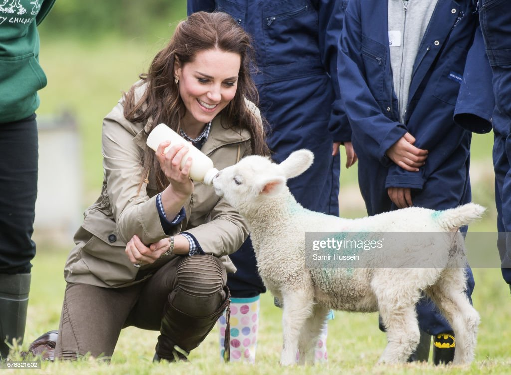 Catherine, Duchess of Cambridge feeds a lamb as she visits Farms for City Children on May 3, 2017 in Arlingham, Gloucestershire. Farms for City Children is a charity which offers children in the UK a chance to live and work on a real farm for a week.