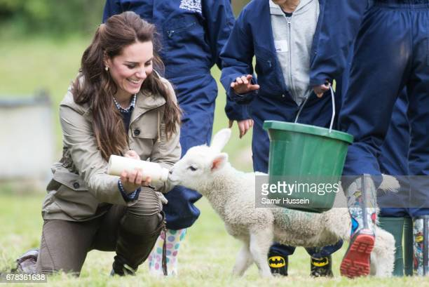 Catherine Duchess of Cambridge feeds a lamb as she visits Farms for City Children on May 3 2017 in Arlingham Gloucestershire Farms for City Children...