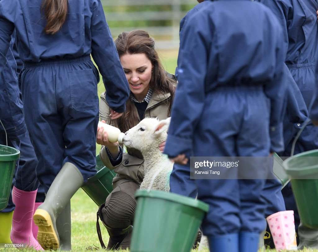 Catherine, Duchess of Cambridge feeds Stinky the lamb during her visit of Farms for City Children on May 3, 2017 in Arlingham, Gloucestershire. Farms for City Children is a charity which offers children in the UK a chance to live and work on a real farm for a week.