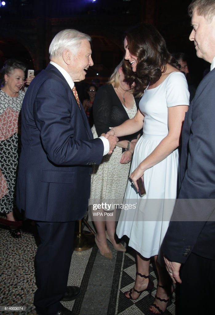 Catherine, Duchess of Cambridge greets Sir David Attenborough at the reopening of Hintze Hall at the Natural History Museum on July 13, 2017 in London, England..