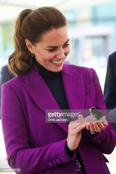 Catherine, Duchess of Cambridge handles a duckling during a tour of the Ulster University Magee Campus on September 29, 2021 in Londonderry, Northern...