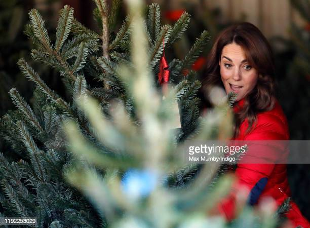 Catherine Duchess of Cambridge helps children choose a Christmas tree as she joins families and children who are supported by the charity Family...