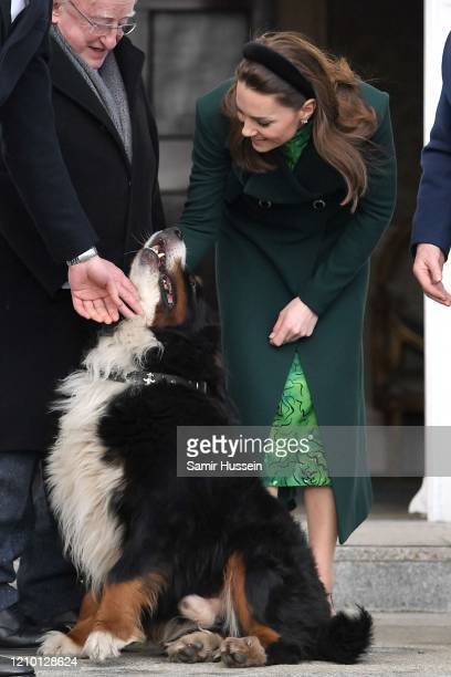 Catherine, Duchess of Cambridge is seen petting a dog during a meeting at Áras an Uachtaráin on March 03, 2020 in Dublin, Ireland. The Duke and...