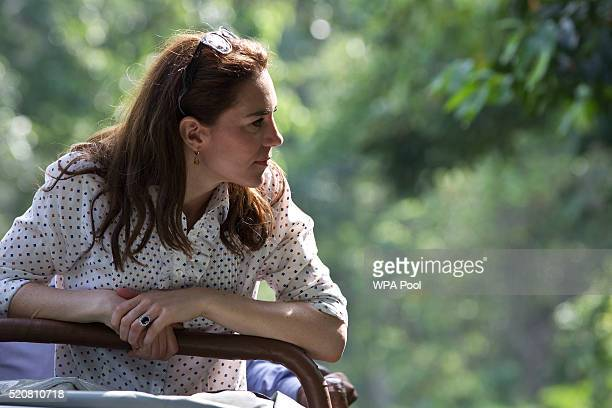 Catherine Duchess of Cambridge looks on while on a Game drive with Prince William Duke of Cambridge at Kaziranga National Park at Kaziranga National...