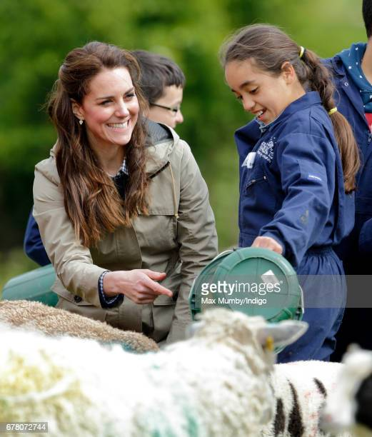Catherine Duchess of Cambridge meets a flock of sheep with their lambs as she visits Farms for City Children on May 3 2017 in Arlingham England Farms...