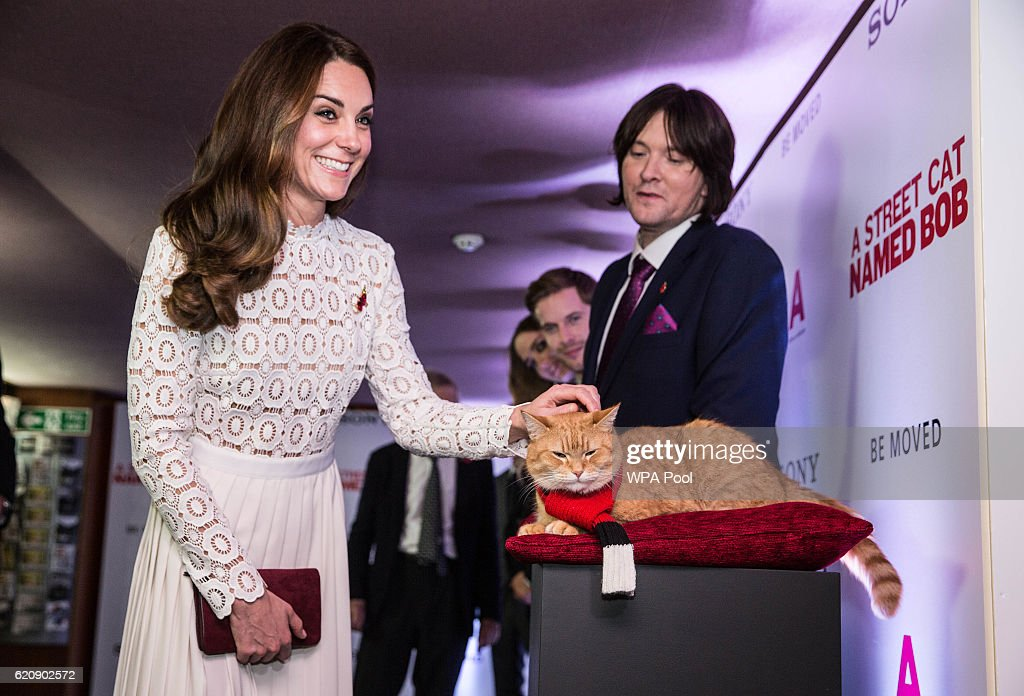"The Duchess Of Cambridge Attends UK Premiere Of ""A Street Cat Named Bob"" In Aid Of Action On Addiction : ニュース写真"