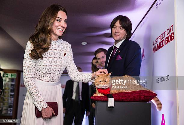 """Catherine, Duchess of Cambridge, Patron of Action on Addiction, greets Bob the cat as she attends the UK Premiere of """"A Street Cat Named Bob"""" in aid..."""