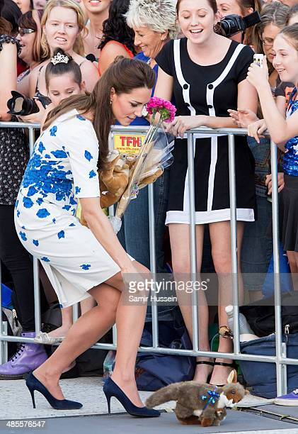 Catherine Duchess of Cambridge picks up a toy kangaroo during a walkabout on April 19 2014 in Brisbane Australia The Duke and Duchess of Cambridge...