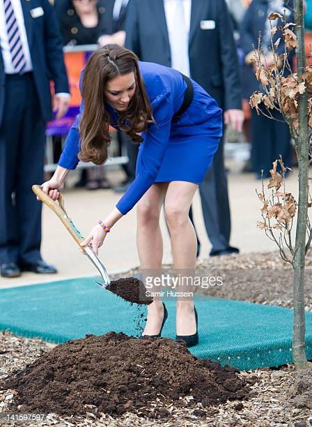 Catherine Duchess of Cambridge plants a tree as she officially opens The Treehouse Children's Hospice on March 19 2012 in Ipswich England