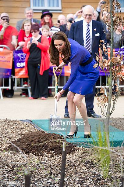 Catherine Duchess of Cambridge plants a tree during the official opening of The Treehouse Children's Hospice on March 19 2012 in Ipswich England