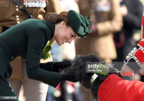 Catherine Duchess of Cambridge presents Irish Wolfhound Domhnall with his Shamrock during the 1st Battalion Irish Guards St Patrick's Day Parade at...