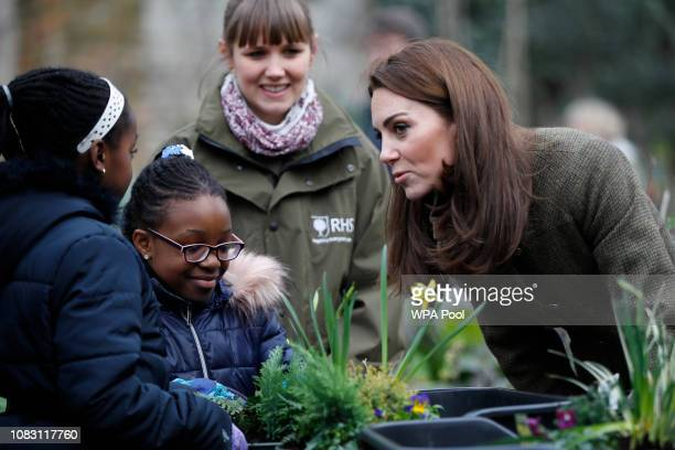 Catherine Duchess of Cambridge talks to children as she visits Islington Community Garden on January 15 2019 in London England