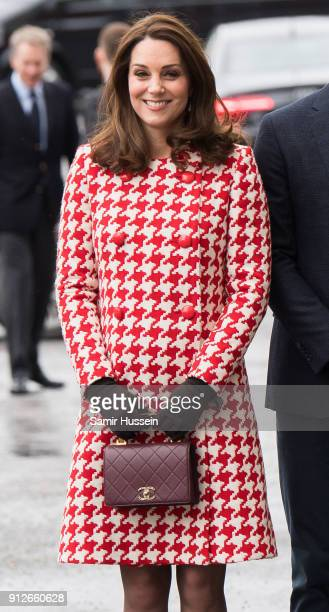 Catherine Duchess of Cambridge visit sthe Karolinska Institute to meet with academics and practitioners to discuss Sweden's approach to managing...