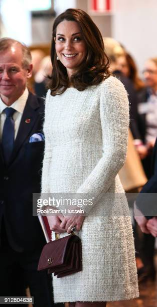 Catherine Duchess of Cambridge visits the Karolinska Institute to meet with academics and practitioners to discuss Sweden's approach to managing...