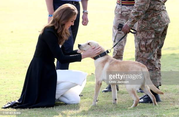 Catherine, Duchess of Cambridge with golden labrador Polka as she visits an Army Canine Centre with Prince William, Duke of Cambridge, where the UK...