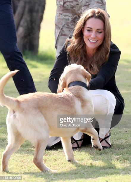 Catherine Duchess of Cambridge with golden labrador Polka as she visits an Army Canine Centre with Prince William Duke of Cambridge where the UK...