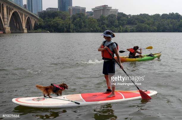 Catherine Frum of Washington DC returns with her dog Homer who is also wearing a life jacket on a standup paddle board after an afternoon on the...