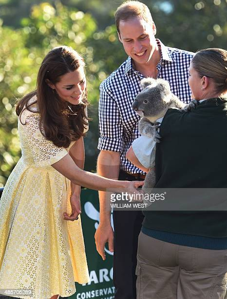 Catherine the Duchess of Cambridge and her husband Britain's Prince William pat a koala named Leuca held by Lucinda Cveticanin as they visit Taronga...